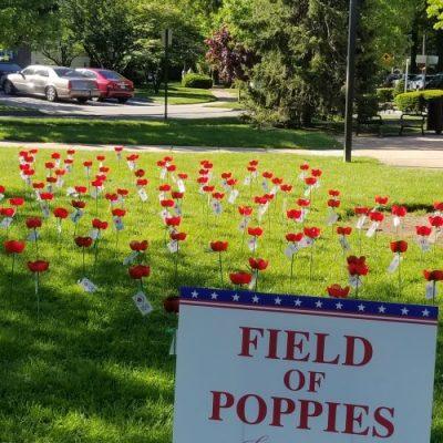 Troop #1622 Poppy Project